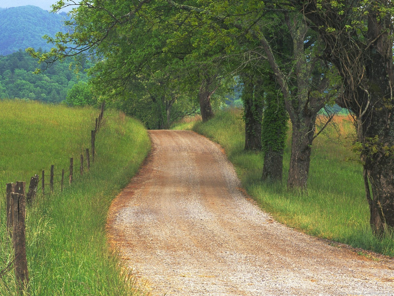 http://conqueringkingdoms.files.wordpress.com/2013/01/country_road_through_cades_cove_great_smoky_mountains_tennessee.jpg
